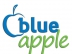 BlueApplePromotions Custom Logo Pens